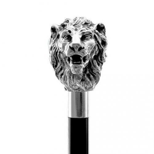 Schuhlöffel-Löwenkopf